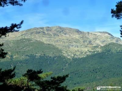 el bosque de irati rutas culturales madrid grupos de senderismo en valencia cerezos en flor jerte